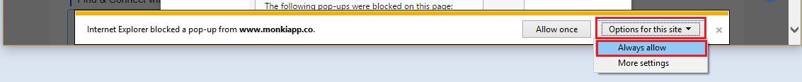 ie allow pop-up windows